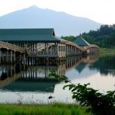 全長300mの日本一長い木の橋「鶴の舞橋」